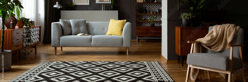 Photo  Real photo of open space living room interior with black and white carpet, grey
