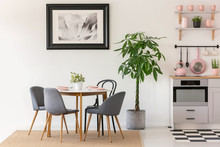 Grey Chairs At Dining Table Next To Plants In Kitchen Interior W