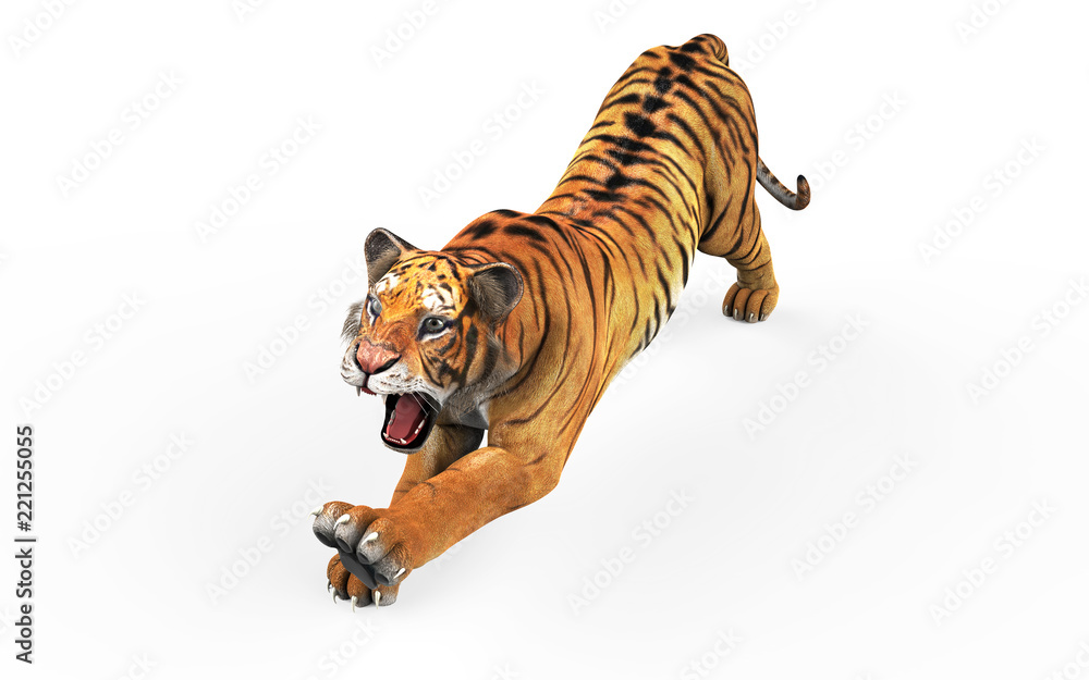 Dangerous Bengal Tiger Roaring and Jumping Isolated on White Background, with Clipping Path, 3d Illustration.