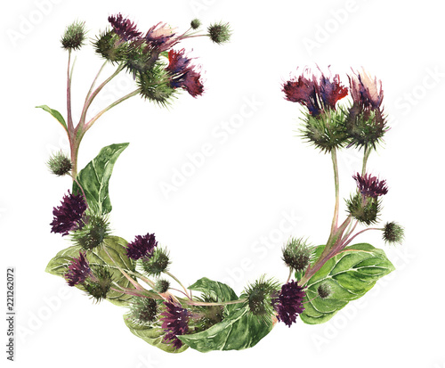 Photo Hand drawn watercolor isolated wreath of a colorful gentle meadow thistle