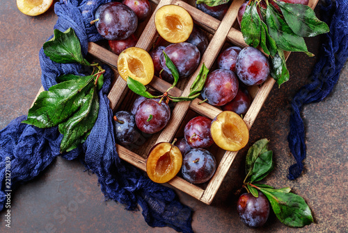 Garden plums on table. Close up of fresh plums with leaves. Autumn harvest of plums.