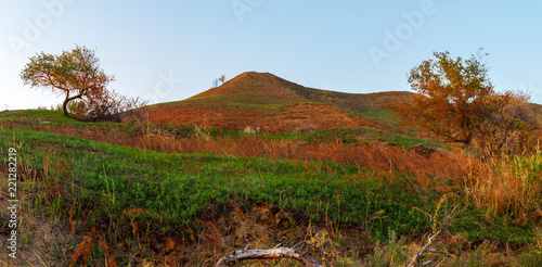Foto  The autumn view with the big hill  and two trees on hillsides