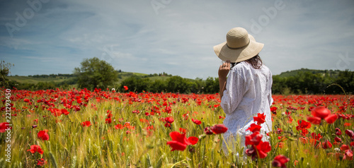 Photo Stands Pale violet Poppies field