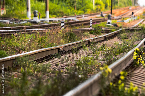 Railway rails in the grass leaving into the distance, soft focus