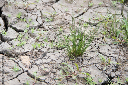 Valokuva ausgetrockneter Boden 1