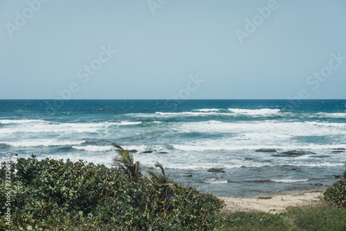 View of the palm trees on Bathsheba beach in Barbados, badly