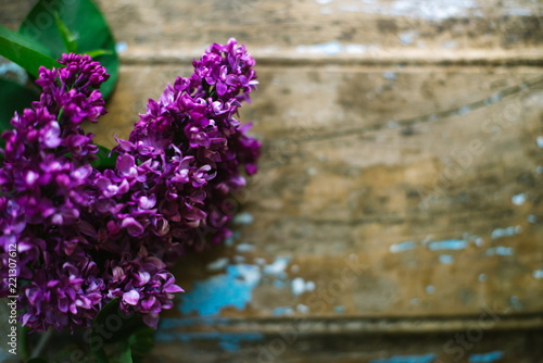 Foto op Canvas Lilac Blooming lilac on an old wooden background