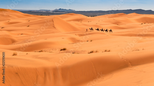 Foto op Aluminium Droogte Camel ride through the desert