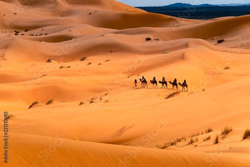 Keuken foto achterwand Zandwoestijn Camel ride through the desert