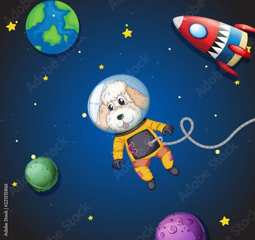 A poodle in space