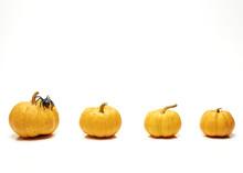 Orange Halloween Pumpkin White
