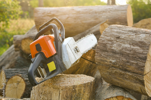 Close-up of woodcutter sawing chain saw in motion, sawdust