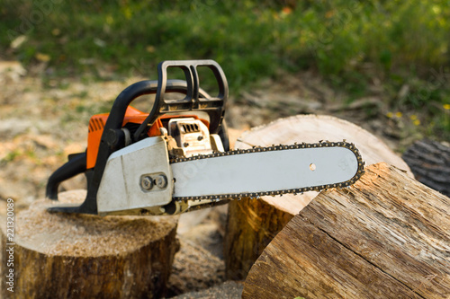 Obraz Close-up of woodcutter sawing chain saw in motion, sawdust fly to sides. Concept is to bring down trees. A person using a chainsaw on pretty wood.Woodcutter saws tree with chainsaw on sawmill - fototapety do salonu