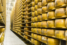 Parmigiano Cheese Factory With...