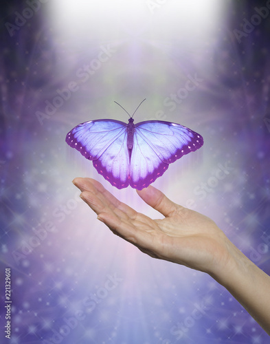 Fotografie, Obraz Spirit Release depicted by a lilac blue Butterfly taking flight - female hand wi