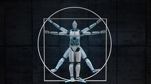Vitruvian Robot