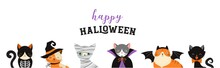 Happy Halloween - Cats In Monsters Costumes, Halloween Party. Vector Illustration, Banner, Elements Set
