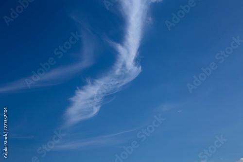 Fototapety, obrazy: white cloud in the blue sky
