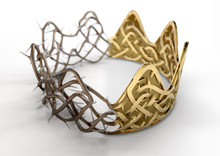 Crown Of Thorns Concept