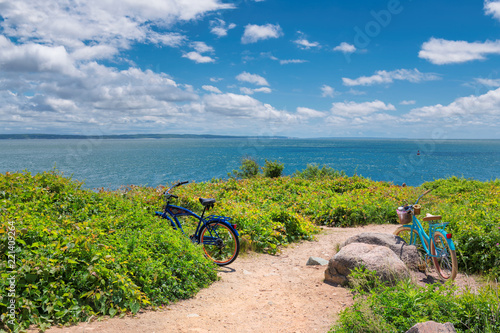 Fotografie, Obraz Two bicycles on the beach trail at sunny summer day in Cape Cod beach, Massachusetts