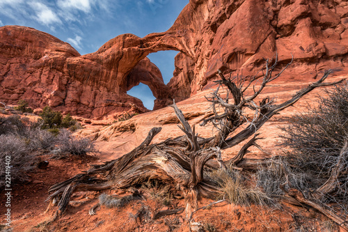 Aluminium Prints Arches National Park