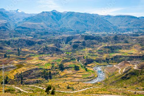 Fotografie, Obraz  Colca Canyon, Peru, South America