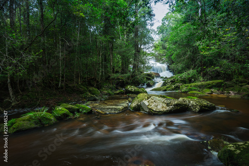 Fototapety, obrazy: Waterfall in the tropical rainforest landscape