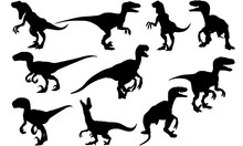 Velociraptor Dinosaur Svg File...