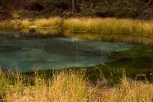Unusual Lake