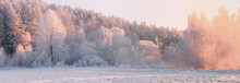 Winter Landscape. Christmas Mo...