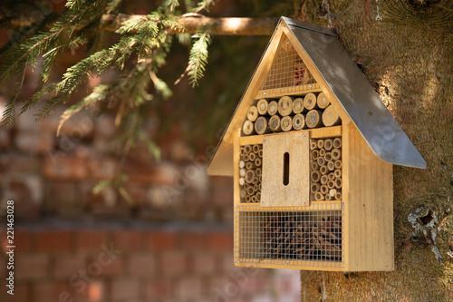 Photographie Insektenhotel
