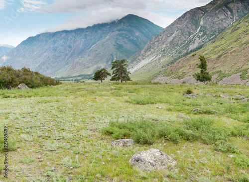 Nature of Altai mountains