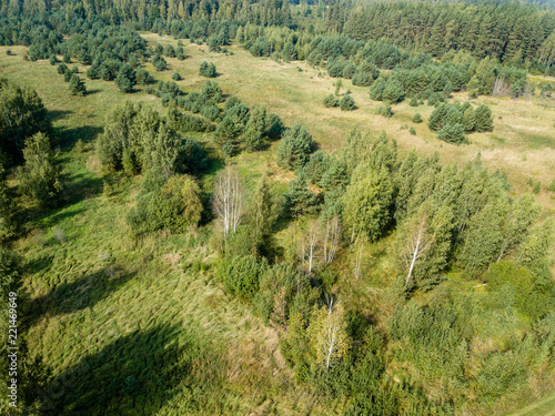 Foto op Canvas Pistache drone image. aerial view of rural area with fields and lonely trees. textured background