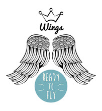 Wings Ready To Fly