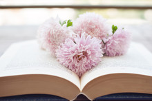 Bouquet Of Pink Colors On The Opened Book