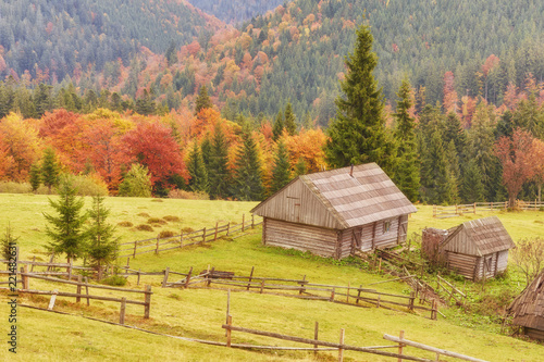 Fotobehang Landschap Colorful autumn landscape in the mountain village. Foggy morning in the Carpathian mountains.