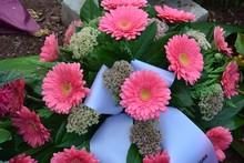 Blumengebinde Der Trauer Zur Beerdigung Auf Einem Frischen Grab - Rosa Gerbera