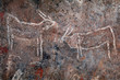 canvas print picture - Bushmen (san) rock painting of eland antelopes, Northern Cape, South Africa.