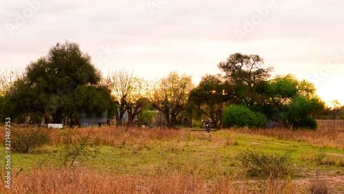 Fototapety, obrazy: Casa de campo del Impenetrable Chaco Argentina