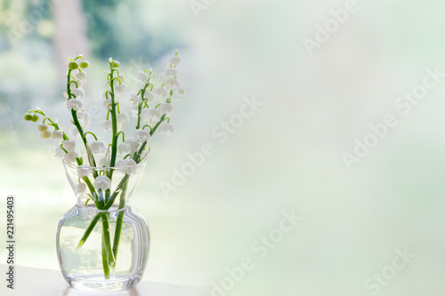 Bouquet of lily of the valley blossoms; soft light illuminating the delicate flowers for a clean fresh look.