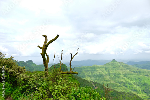 Staande foto Olijf Beautiful landscape aerial, and closeup Photos of nature, roads, grass, trees, village, and farm land. Lush green monsoon nature mountains, hills, Purandar fort, Pune, Maharashtra, India