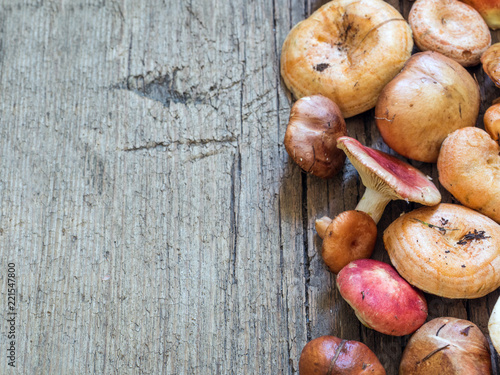 Fotografía  A variety of raw fresh forest mushrooms on wooden background