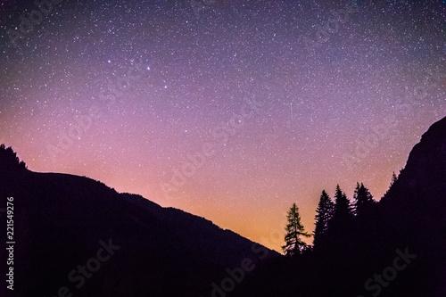 Fotografering  Sterne und schwarze Baum-Silhouetten, Nachtaufnahme