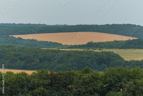 Green fields. Agricultural landscape. Harvest. South of Russia. Geometry of fields.