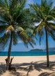 Beautiful sandy beach with palm trees