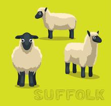 Sheep Suffolk Cartoon Vector I...