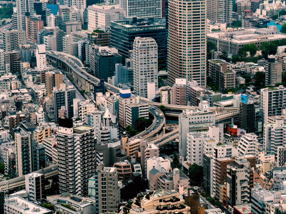 Fototapeta Tokyo cityscape : Japan
