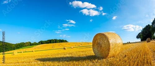 Obraz Landscape in summer with hay bales on a field and blue sky with clouds in the background - fototapety do salonu