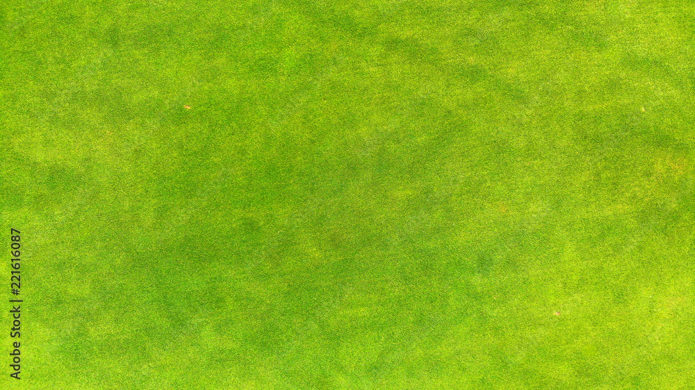 Fototapety, obrazy: Aerial. Top view of a green grass texture background.