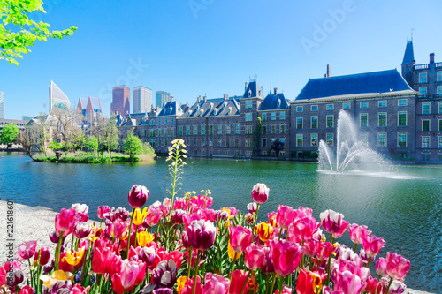Papiers peints Con. ancienne Binnenhof - Dutch Parliament with growing tulips, The Hague, Holland